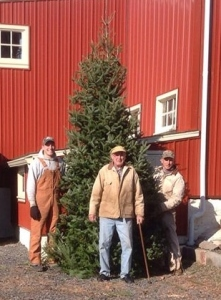 3 generations and tall tree